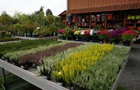 Zahradní centrum 1